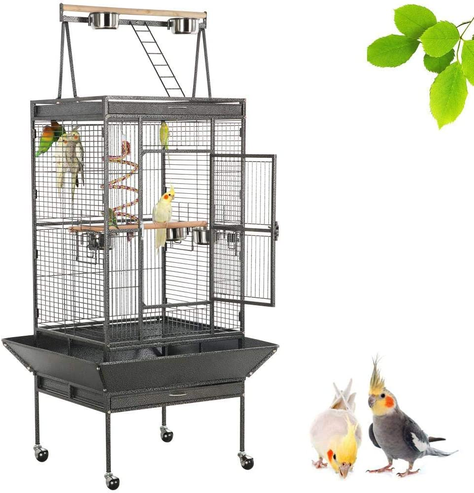 Best Bird Cages For Conures 2020