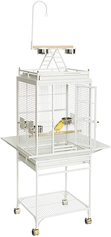 Importance of Quality Bird Cages and Their Advantages
