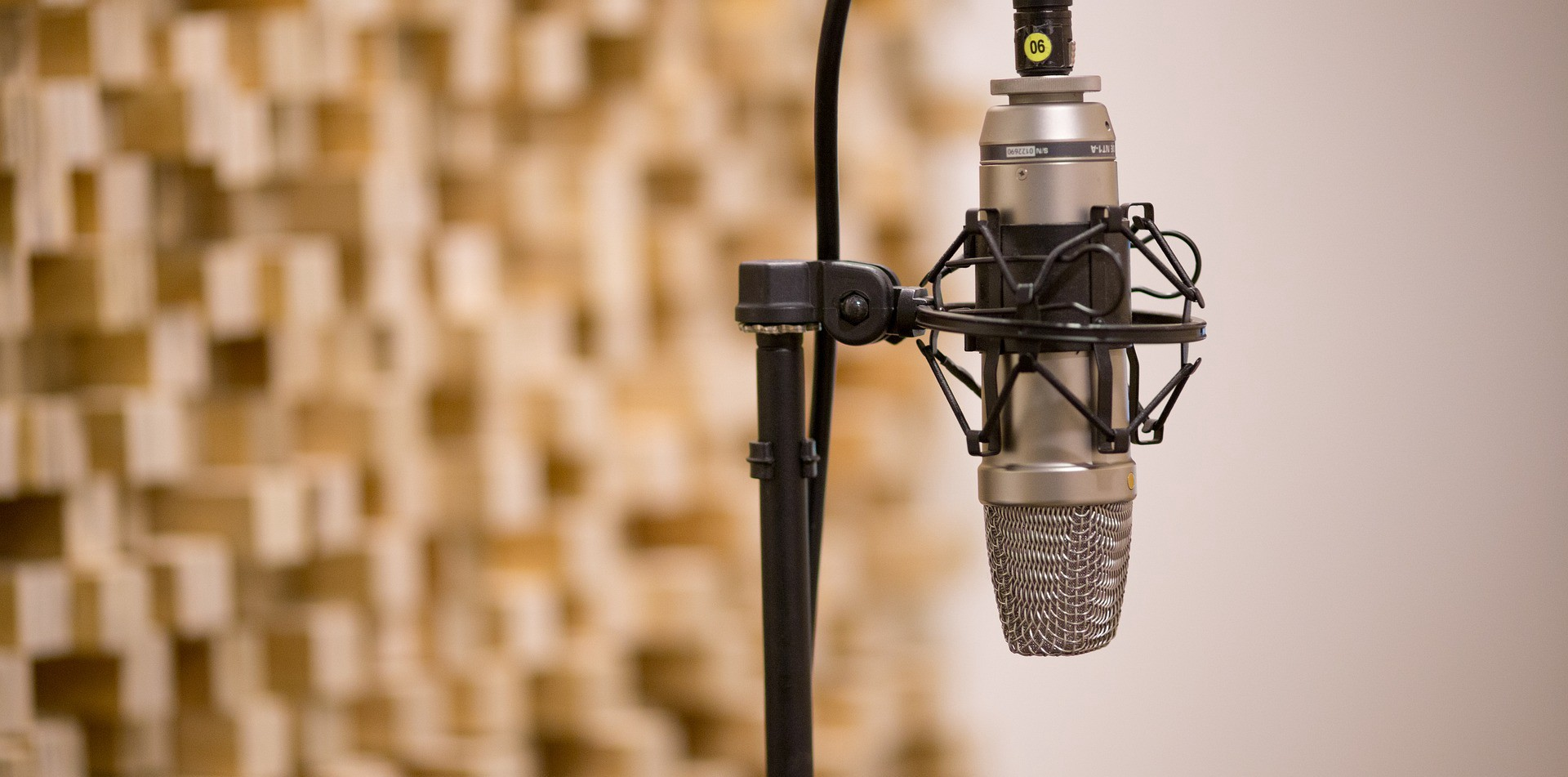 How to Choose the Best Microphone?